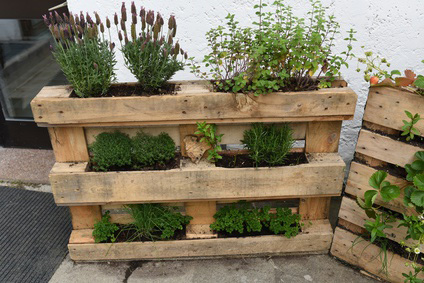 5 idee per un giardino verticale... allaltezza